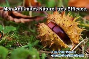Anti Mite Alimentaire Naturel : 247 best images about trucs maison on pinterest white ~ Melissatoandfro.com Idées de Décoration