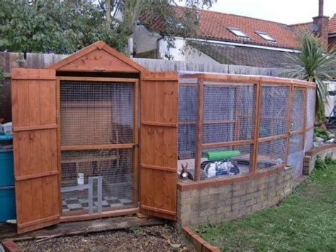 aviary shed lovely shed and aviary set up generous size and height