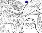 Coloring Sloth Copy Slothful Reviewed Viewed Billionaire Wilson sketch template