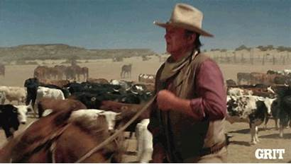 Gifs West Giphy Cowboy Grittv Cattle Western