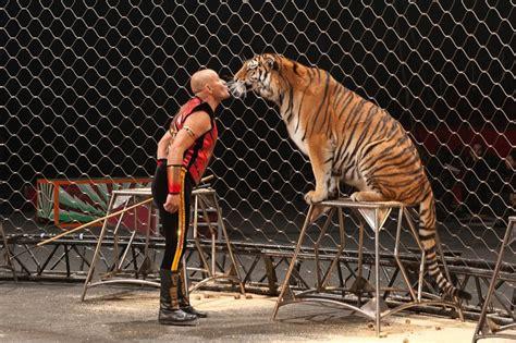 Biglietto Ingresso Circo Rinaldo Orfei Circo It Sito Mensile Circo Ente Nazionale
