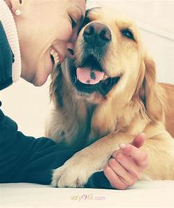 Heart Touching Photos of Dogs with Humans | Designbeep