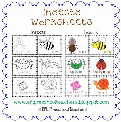 Preschool Worksheets Insects Worksheet Esl Trace Animals
