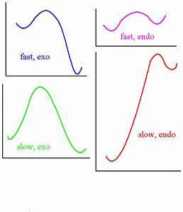 Equilibria  Energy Rates - Organic Chem 3540