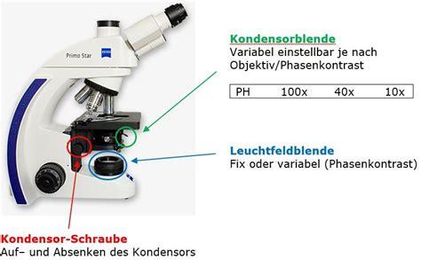 Wie Stelle Ich Mein Mikroskop Richtig Ein?