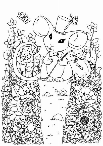 Coloring Pages Mouse Adult Children Printable Theme