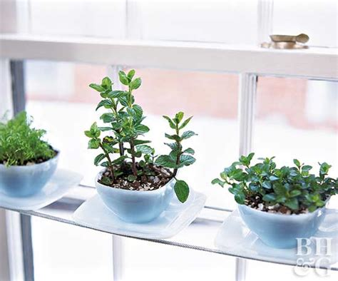 Window Sill Plant Pots by Windowsill Gardens