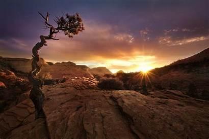 Desert Sunset Utah Landscape Zion Fall Park