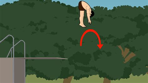 How To Dive by How To Dive Into A Pool 12 Steps With Pictures Wikihow
