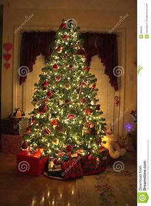 Christmas Tree stock image. Image of adorned, hope ...