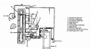 Complete Renix Vacuum Diagram  - Naxja Forums