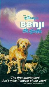 Watch Benji The Hunted On Netflix Today