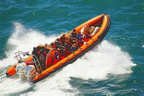 Boat Trip Ilfracombe by Rib Sea Safari From Ilfracombe In Boat Trips