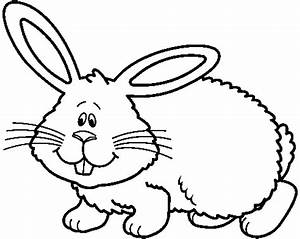 Rabbit Black And White Drawing - ClipArt Best