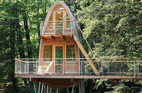 unusual forest cabin  stilts  pond