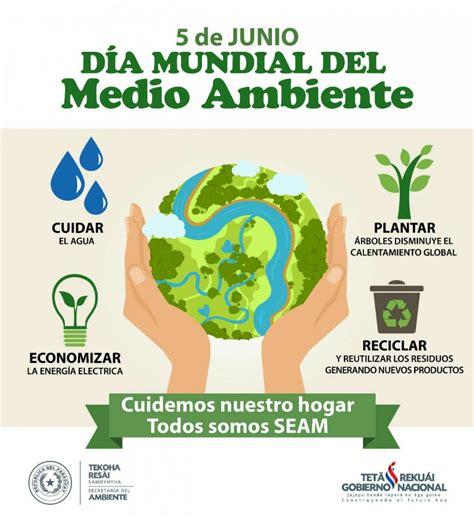 hoy 5 de junio se celebra el d 237 a mundial medio ambiente seam