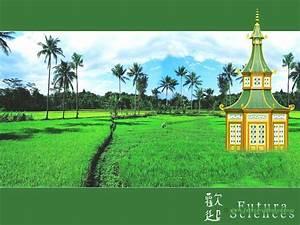 fond d39ecran pagode et rizieres With forum plan de maison 12 fond decran paysage feerique