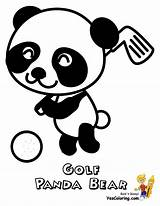 Golf Coloring Panda Pages Printable Clubs Golfer Bear Yescoloring Playing Course Golfers Pandas Printables Courses Club Sports Gallant Stuff Disc sketch template