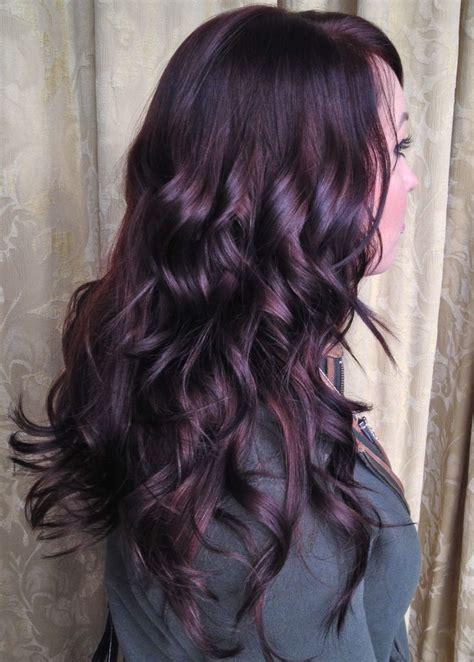 gorgeous shiny dark plum hair perfect   add