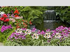 Flower Garden HD Desktop Background Wallpaper WallpaperLepi