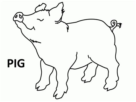 pigs pictures cartoon clipartsco