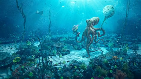 Octopus Date Wallpapers Hd Wallpapers Id 24767