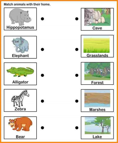 animals and their habitats worksheets worksheets for all