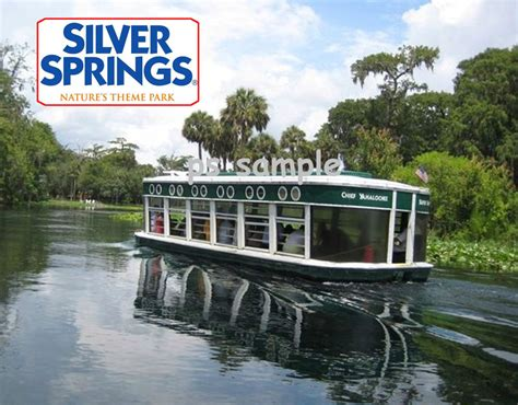 Silver Springs Glass Bottom Boat by Florida Silver Springs Glass Bottom Boat