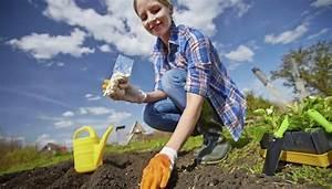 Gemüsegarten Anlegen Für Anfänger : gem segarten anlegen und gestalten so einfach es selbst f r anf nger ~ Whattoseeinmadrid.com Haus und Dekorationen