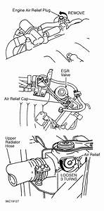 1996 Ford Ranger Serpentine Belt Routing And Timing Belt