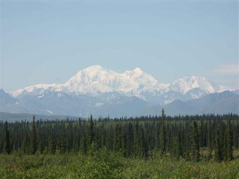 รูปภาพฟรี: ป่า ภูเขา พื้นหลัง
