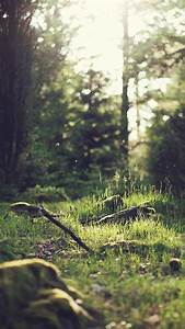 26 beautiful back to nature iphone wallpapers preppy