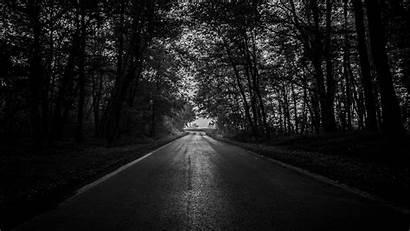 Forest Road Trees 4k Dark Bw Ultra