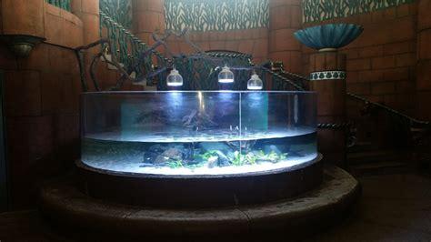 led aquarium lighting planted tank bahamas hotel chooses orphek led lighting orphek
