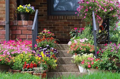 Herbst Blume Im Garten by Top 20 Gartenblumen F 252 R Fr 252 Hling Sommer Herbst Winter