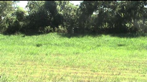 acupat ucp army digital camouflage  multicam youtube