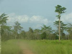 Maduru Oya National Park