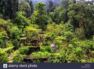 Berg Des Garten : aerial view bogot stockfotos aerial view bogot bilder alamy ~ Indierocktalk.com Haus und Dekorationen