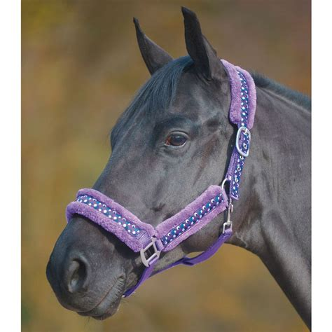 Green And Purple Rugs by Spotty Padded Headcollar Headcollars And Leadropes For