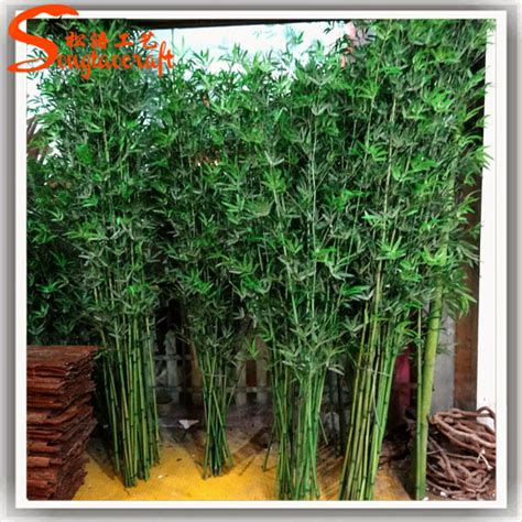 hotels lucky bamboo plants sale decorative bamboo palm