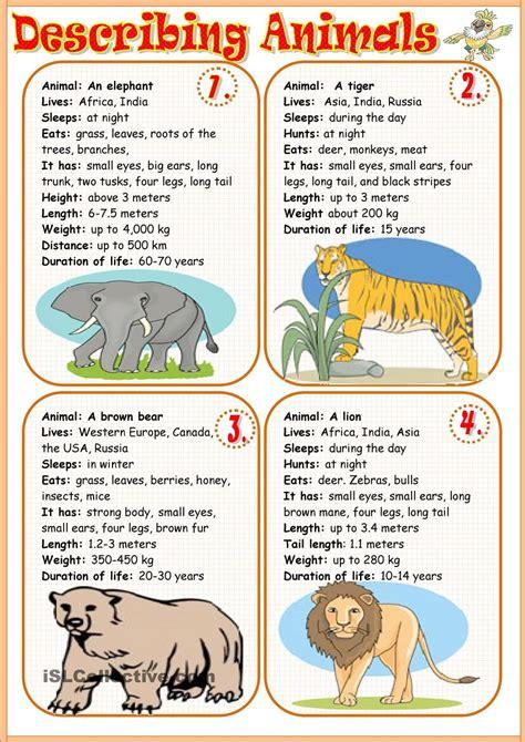 describing animals 1 animal and worksheets