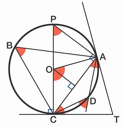 Circle Properties Geometry Math Brilliant Science Numerous