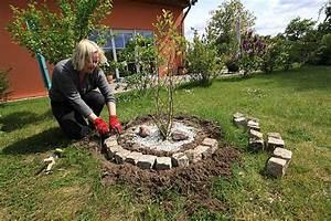 Steine Für Beeteinfassung : beeteinfassung mit kantensteinen 1 ~ Buech-reservation.com Haus und Dekorationen