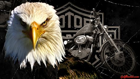 Harley Davidson Wallpapers And Screensavers (80+ Images