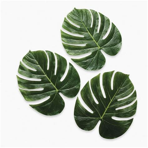 tropical palm leaves  large  luau decor hawaiian