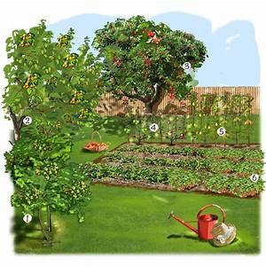 Jardin verger jardin potager jardineries truffaut for Idee d amenagement de jardin 2 jardin verger jardin potager jardineries truffaut