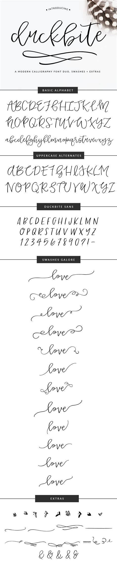 letter from ceo duckbite swash calligraphy font fonts amp letters 22849 | fd35785eb98fe41c13fb2c81c8cda658