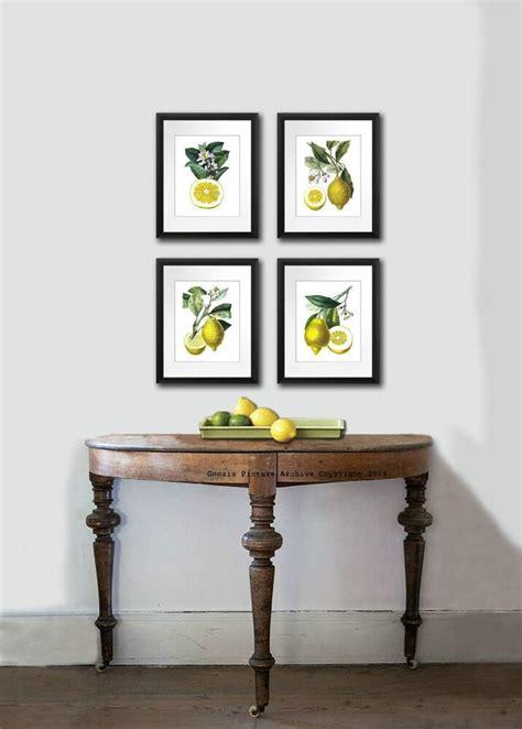 kitchen art decor antique botanical print set   lemons