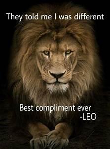1796 best LeoLa... Lion Sign Quotes