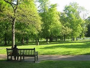 Parks In London : hyde park london love pinterest beautiful parks and london ~ Yasmunasinghe.com Haus und Dekorationen